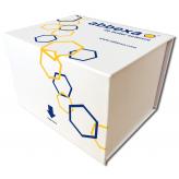 Total Aflatoxin Rapid Test Kit